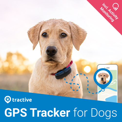 user-manual_DOG-Tracker.jpg