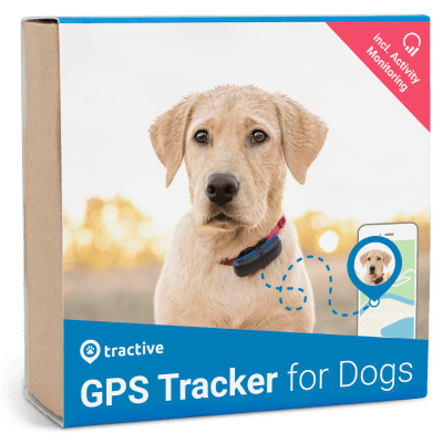 dog-tracker-packaging-400w.png